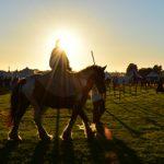 Feria Medieval_ok